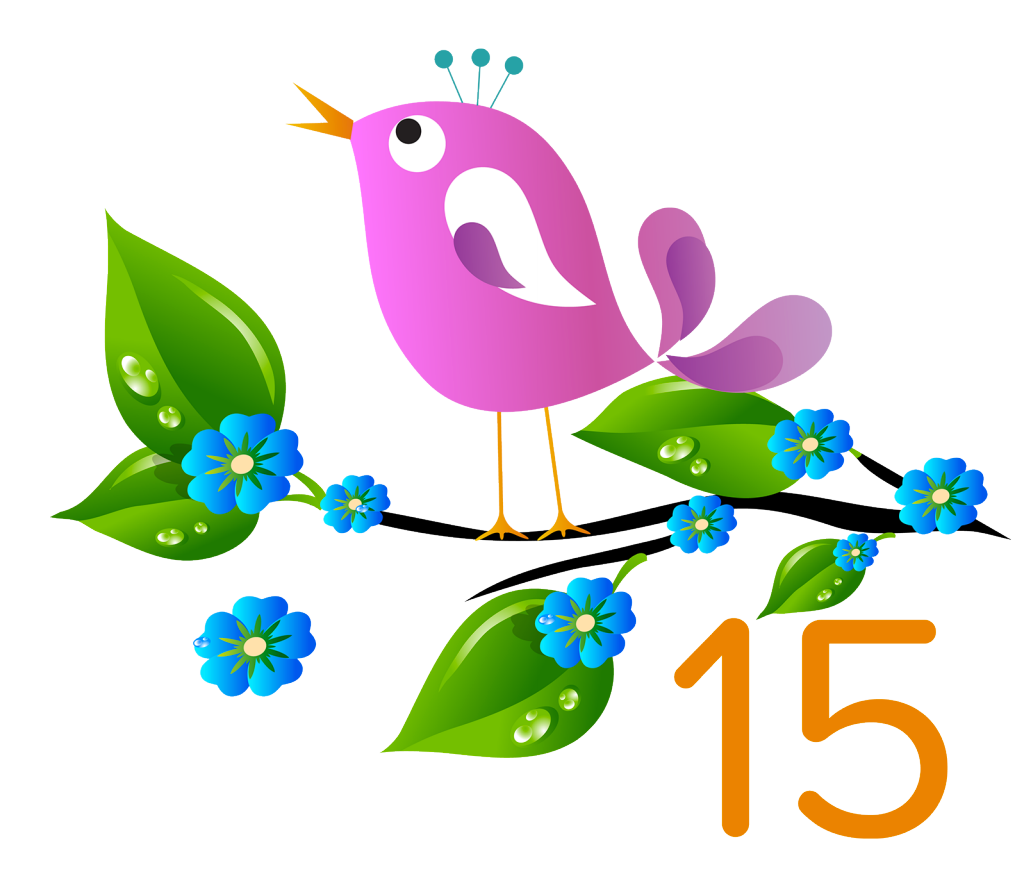 84 Things You Should Know about the salesforce.com Spring '15 Release